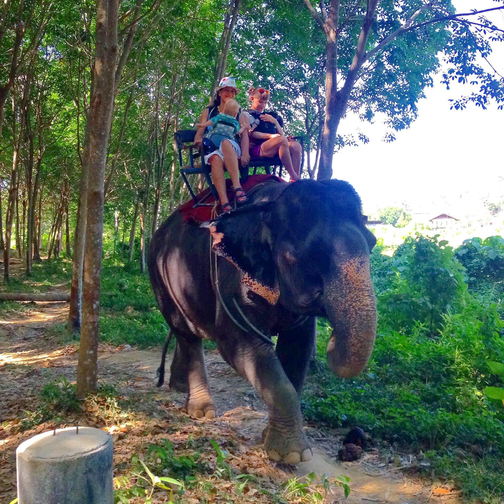 Путешествия с детьми: Таиланд. Наши заметки: Экскурсія - слон, печера, водоспад