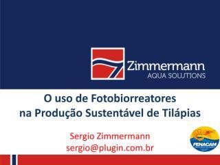 sergio zimmermann.pdf