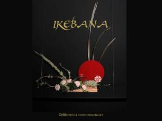 nghe thuat cam hoa 1-ikebana.pps